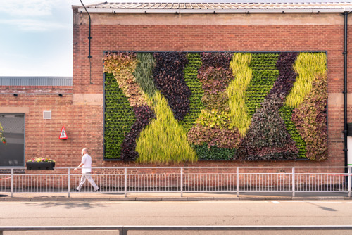 BENTLEY INSTALLS LIVING GREEN WALL AT THE HEART OF ITS OPERATIONS IN CREWE