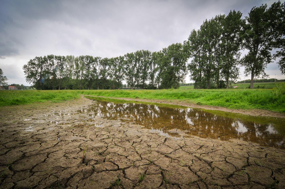 Verdroging en wateroverlast zijn twee schijnbaar tegengestelde fenomenen die echter allebei frequenter zullen optreden als de klimaatverandering zich blijft doorzetten.'