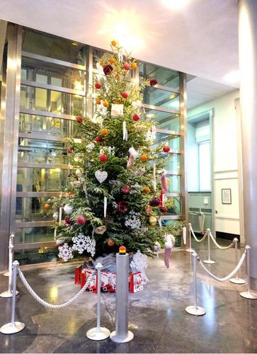 Kerstboom van Duitstalige Gemeenschap in het Vlaams Parlement
