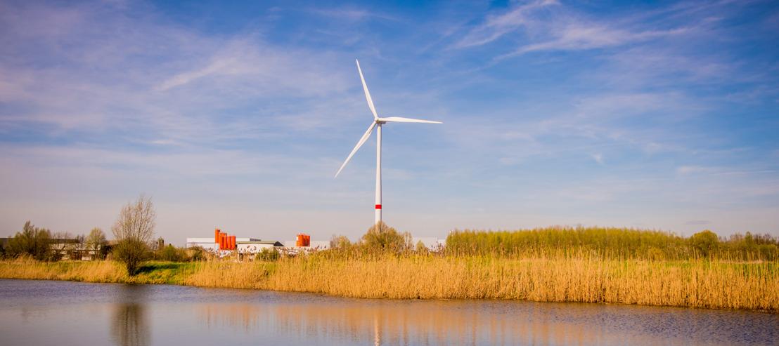 Omwonenden kunnen participeren in het Storm-windpark in Pelt
