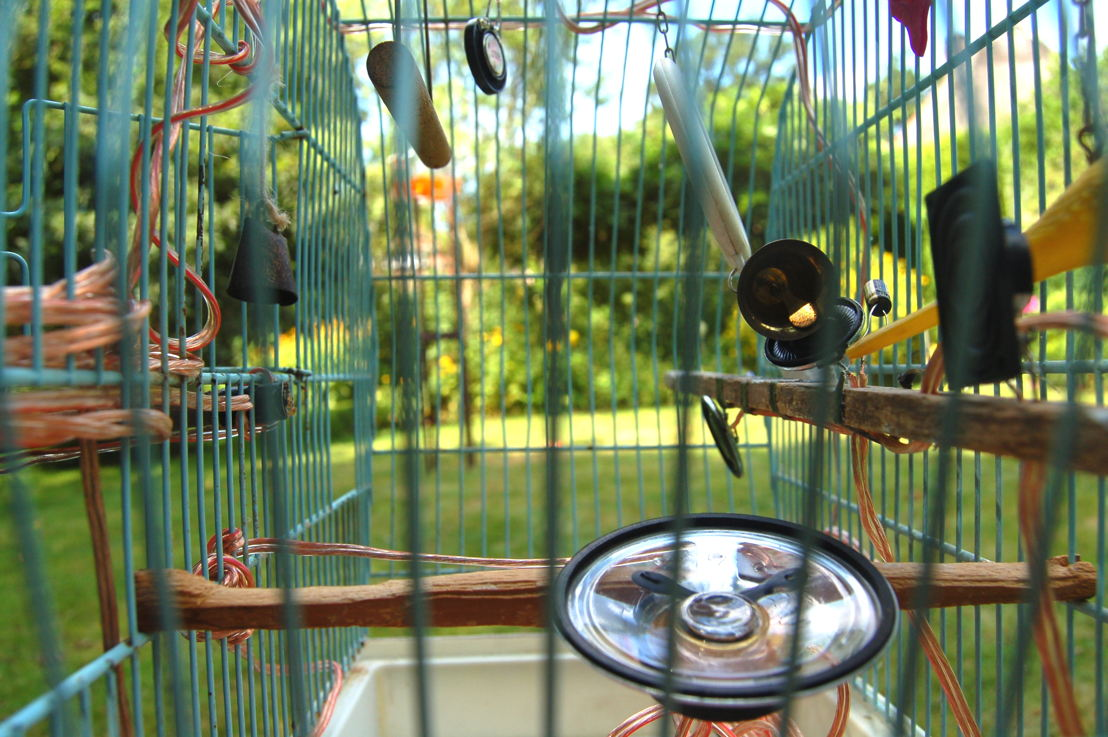 Vogelfänger - klankinstallatie Paul Melzer en Tobias Klich