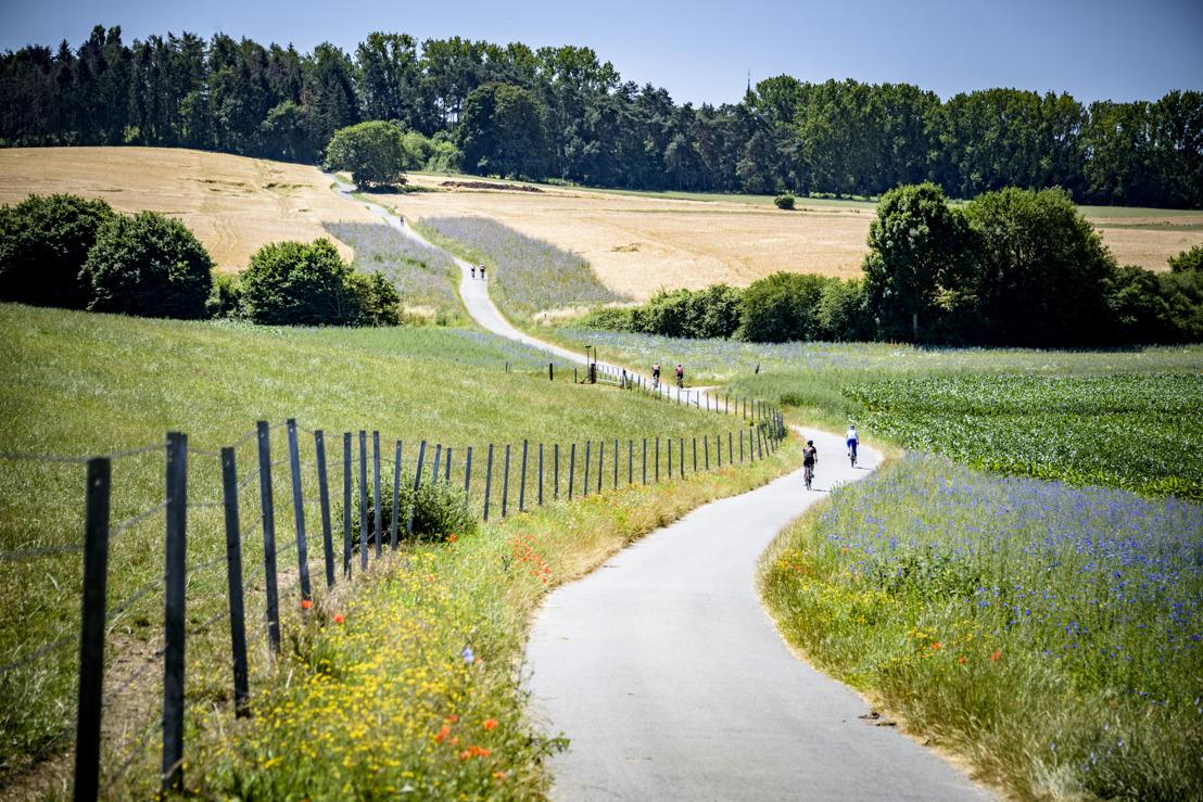 De Brabantse Pijl Cycling Route loodst fietsers langs mooiste plekjes van Dijleland