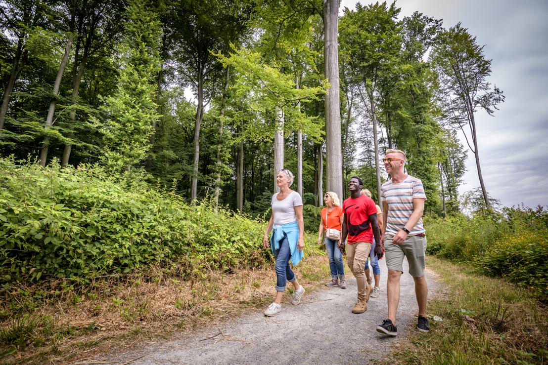 Expats in Vlaanderen gaan deze zomer op daguitstap in België