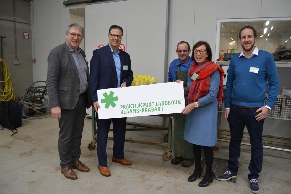 Proefcentrum Herent en Nationale Proeftuin voor Witloof worden Praktijkpunt Landbouw Vlaams-Brabant