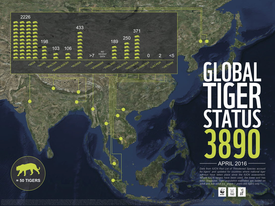 Infographic - Global Tiger Statistics