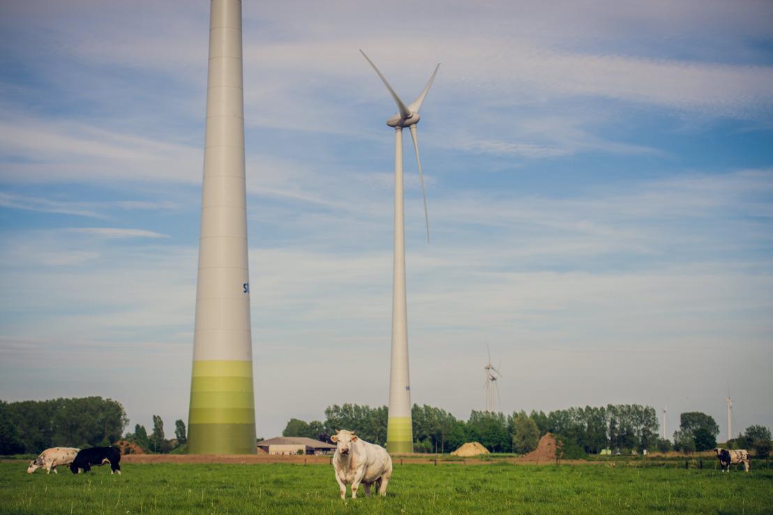 Storm en Clef plannen de ontwikkeling van twee windparken langsheen de A8/E429 in Doornik