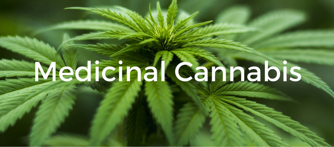 St. Vincent & the Grenadines Government Shares Draft Medicinal Cannabis Industry Bill with the Public