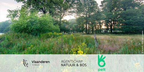 Aanplant toegangsdreef met winterlindes in het Hobos te Bosland