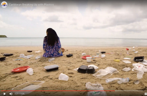 It's time for the Caribbean to Break Up with Plastics