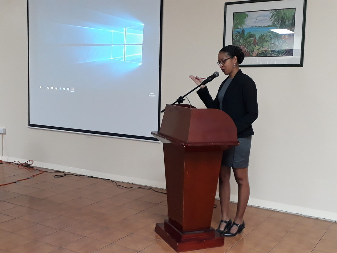 Nathalie Lugiery, International Development Councel at the Chamber of Commerce of Martinique