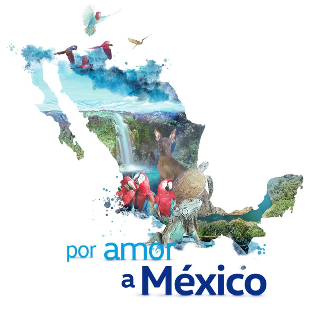"""Volkswagen presenta la segunda edición del programa """"Por amor a México"""""""