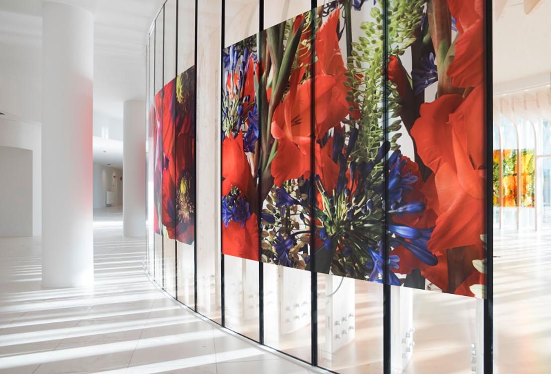 Forte nomination belge au World Architecture Festival
