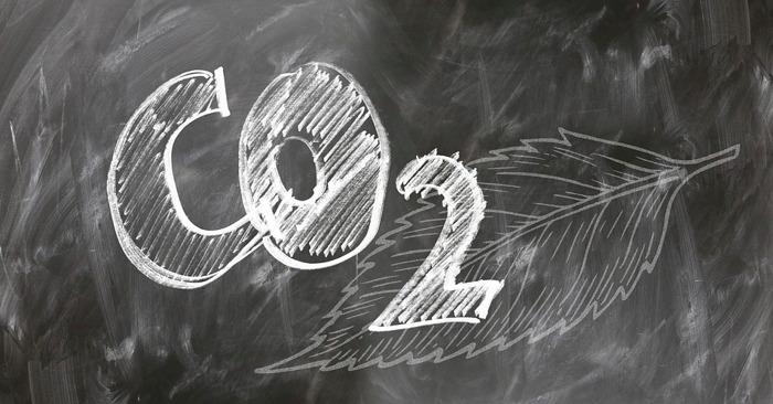 BDO is eerste klimaatneutrale consultancykantoor van België