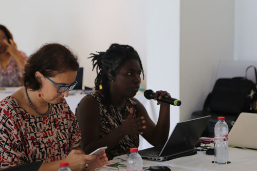 Coopération médicale dans la Caraïbe : les professionnels de santé font le point sur l'avancée du projet INTERREG CARES