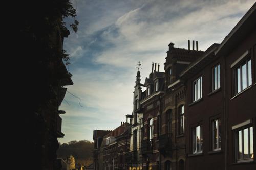 Hoorzitting over de audit van de 'Logement Molenbeekois' in het Brussels Parlement
