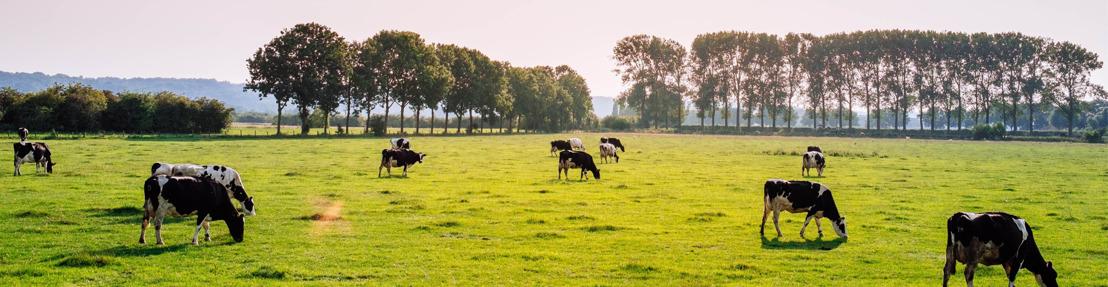 Voorstelling duurzaamheidsrapport Belgische zuivelsector & bezoek aan boerderij van de toekomst