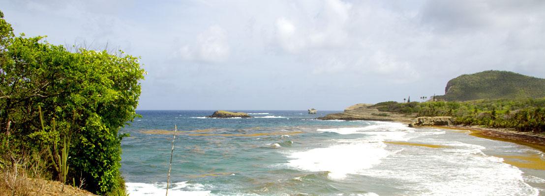 OECS Member States to Validate Coastal and Marine Spatial Plans on February 26, 2021