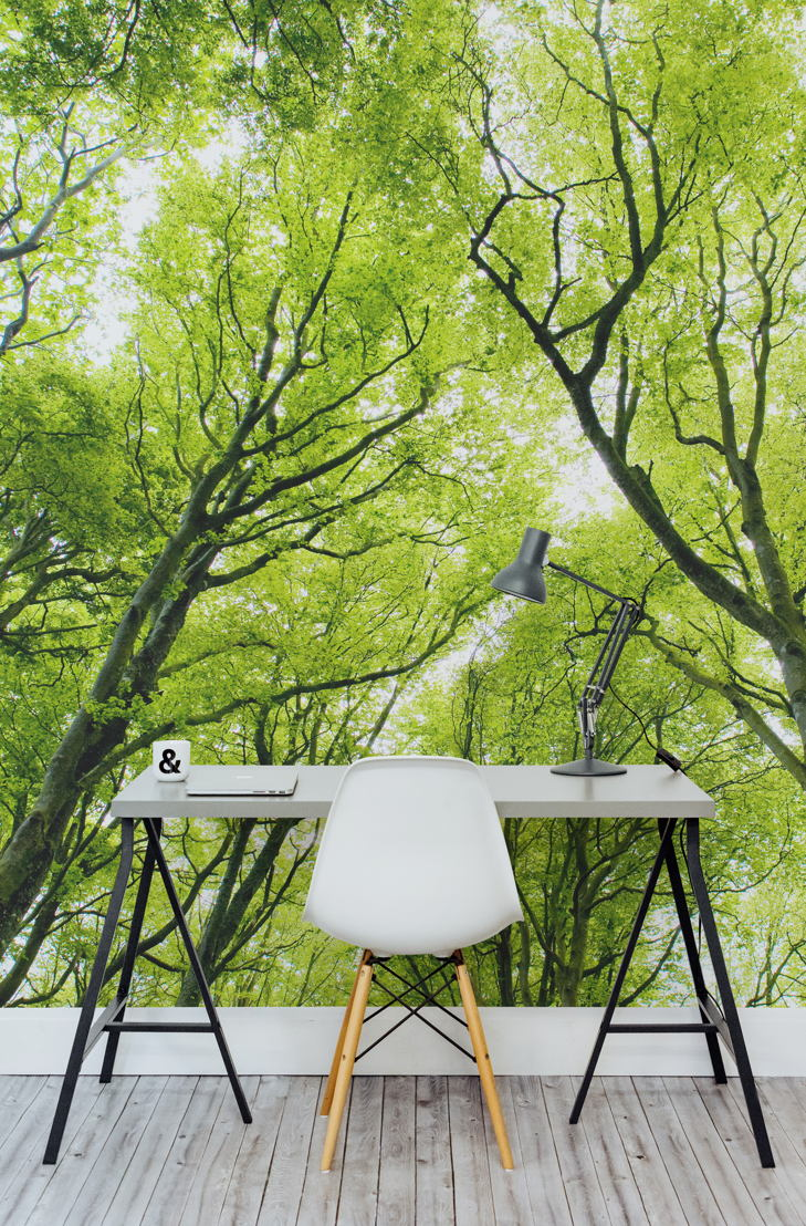 Bright Green Canopy Wall Mural
