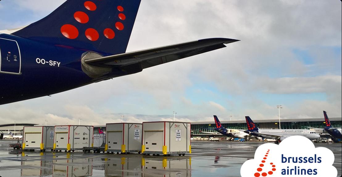 Lufthansa Cargo et Brussels Airlines Cargo entament une coopération étroite.
