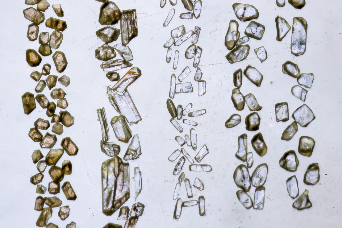 Zircon crystals. Image: Stuart Hay, ANU.