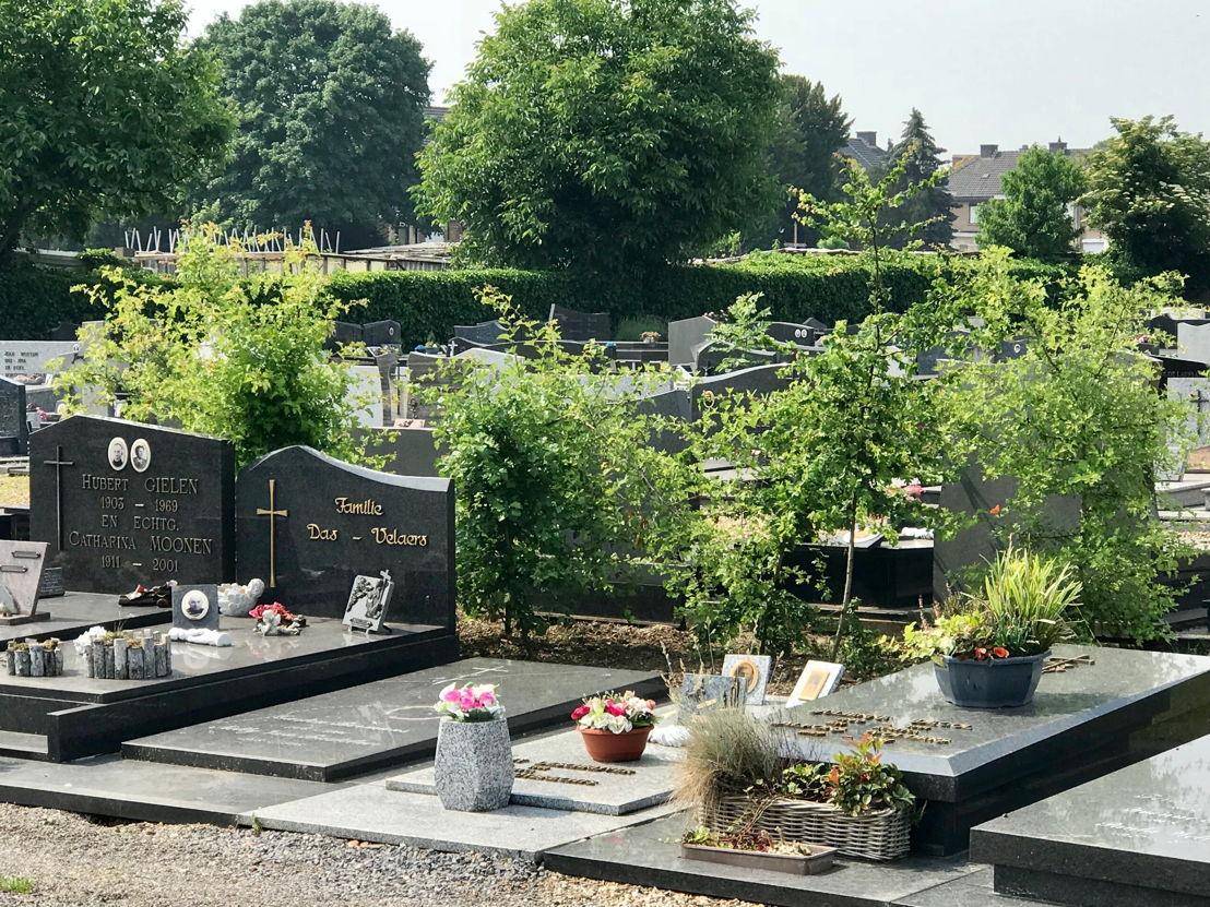 Vergroening-begraafplaats-Diest