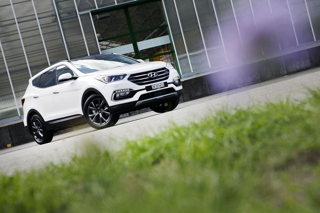 Hyundai Suisse