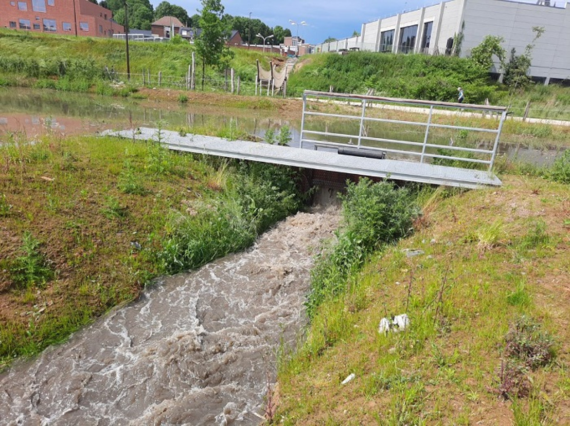Vlaamse rand wordt groen-blauwe rand: 8,5 miljoen euro extra voor meer open ruimte