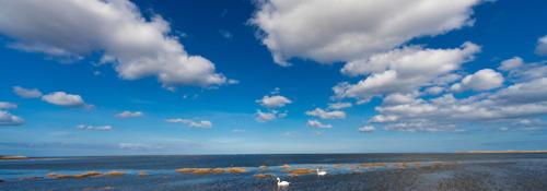 La Nube no está en el cielo, sino en la tierra… y hasta debajo del mar