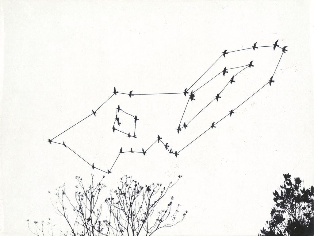 © Philippe Van Snick, Duif en Duiven, 1974