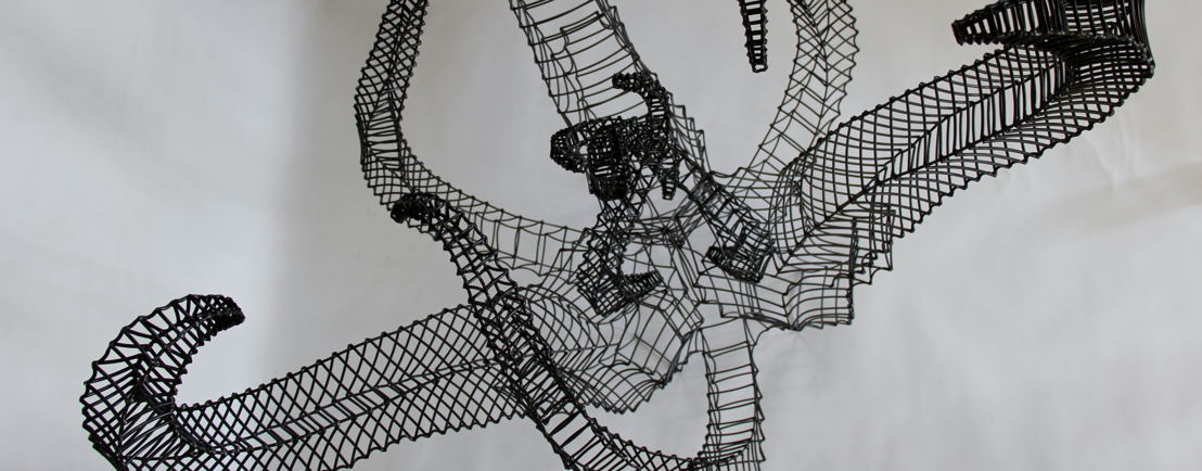 Beth Diane Armstrong,only one living, 2016, 4mm Galvinised Wire, Clear Lacquer, 173 x 125 x 125cm. Detail 1. Courtesy of the Artist and Everard Read CIRCA.JPG