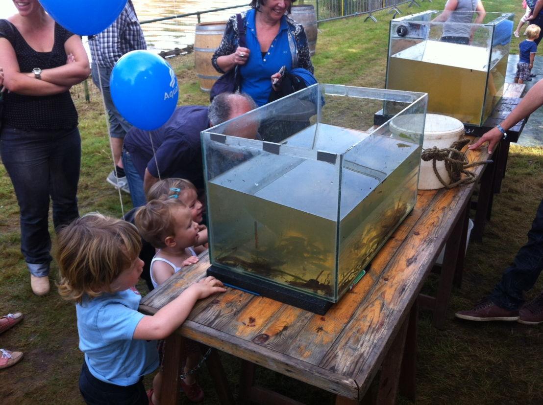 De aquaria met vissen uit de Kleine Nete trokken veel kijklustigen.