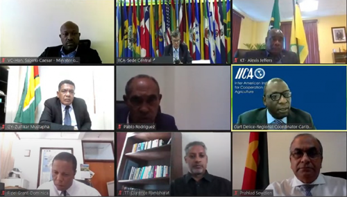 Caribbean Agriculture Ministers Discuss New Challenges Stemming from the Pandemic and Highlight IICA's Role in Tackling Food Security