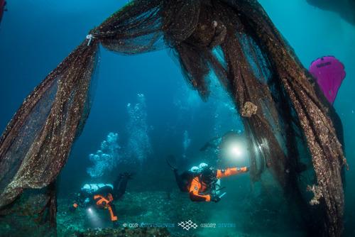 Hyundai Motor wird Partner der Meeresschutzorganisation Healthy Seas