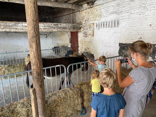Communiqué de presse : FarmCity - Une occupation temporaire dédiée à l'AGRI-CULTURE