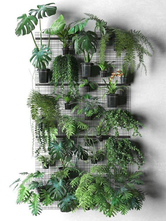 Crea tu propio jardín vertical con la ayuda de Pinterest