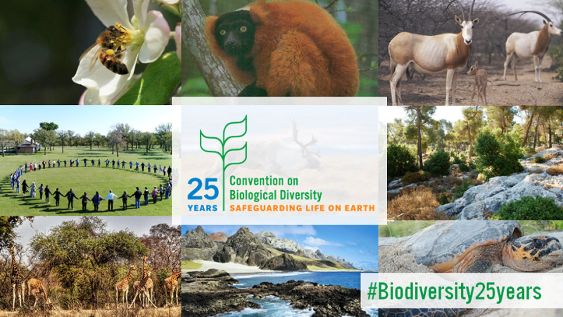 OECS Commission observes International Day of Biological Diversity