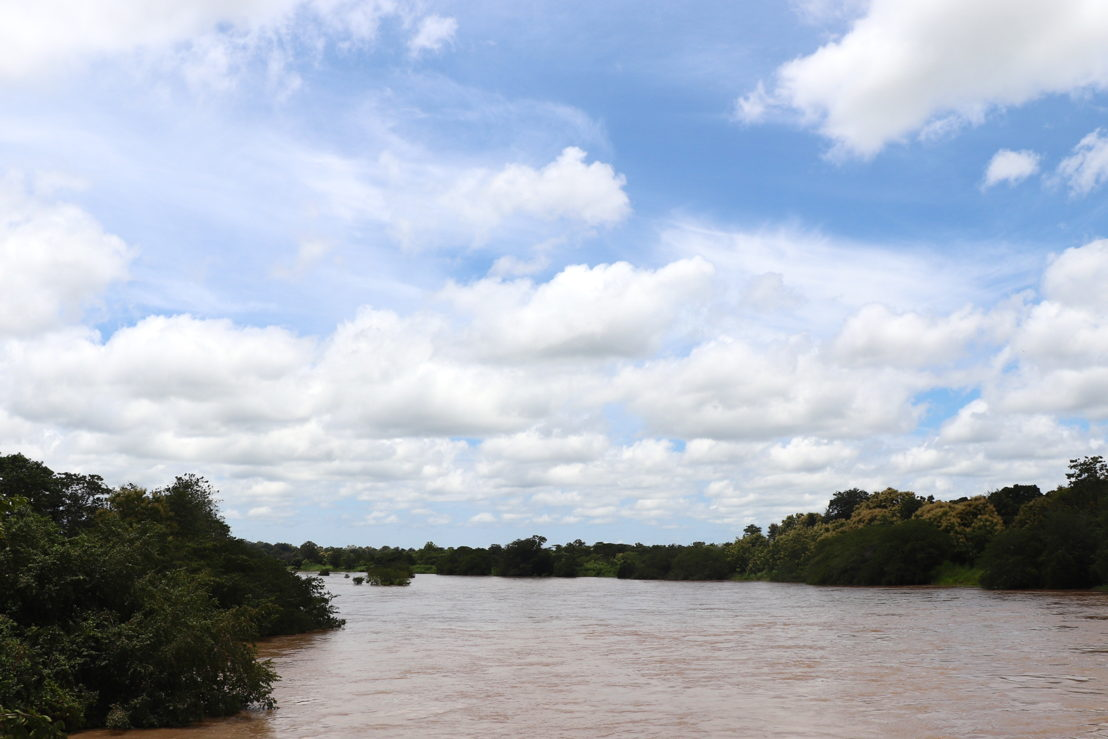 View on the Ouham river, passing by Bossangoa. Photographer: Elisa Fourt