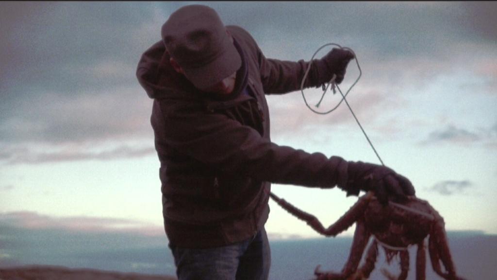 Wilde keuken aflevering 4 - Krab - Sven met koningskrab - (c) VRT - NTR