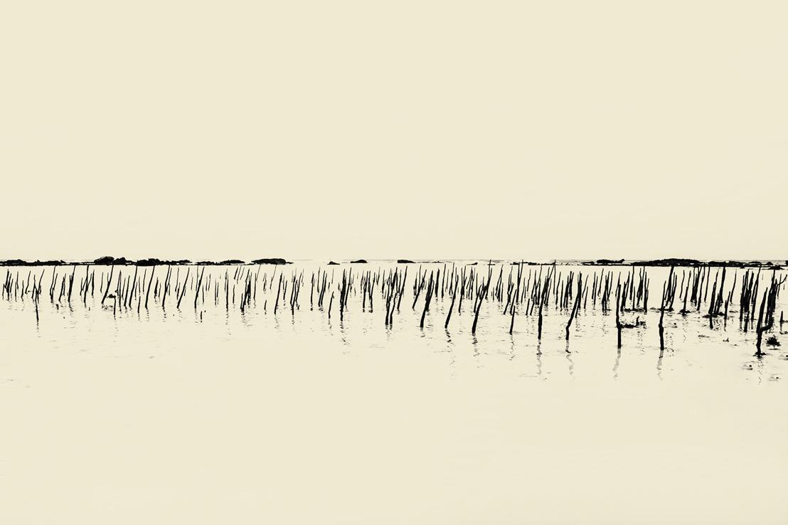 Dutch photographer Paul Cupido presents his ephemeral, poetic images