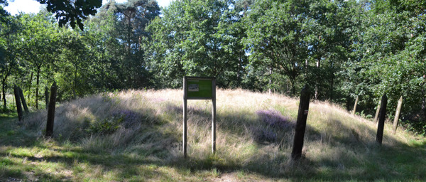 Preview: VUB research explores reuse of ancient burial mounds in nature reserves