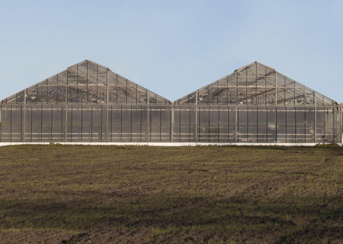 De opvang en het hergebruik van regenwater afkomstig van serres in de tuinbouwsector wordt door de dienst Bedrijfsdoorlichting fel aangemoedigd.