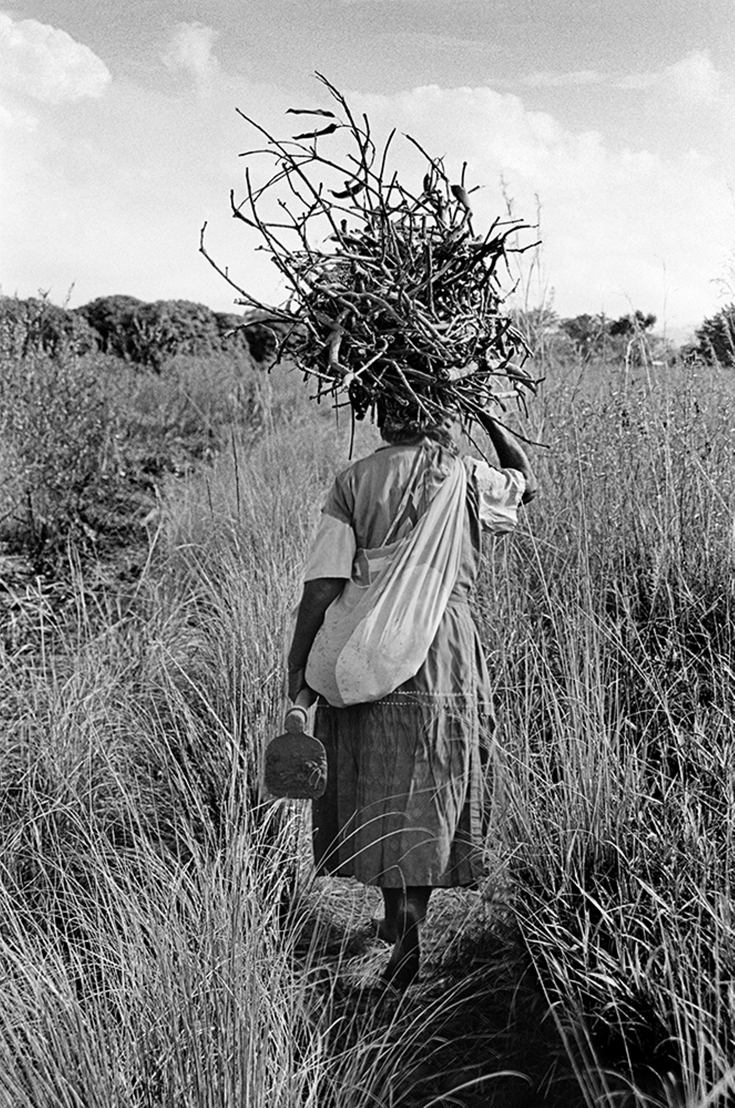 Emakhaya carrying firewood