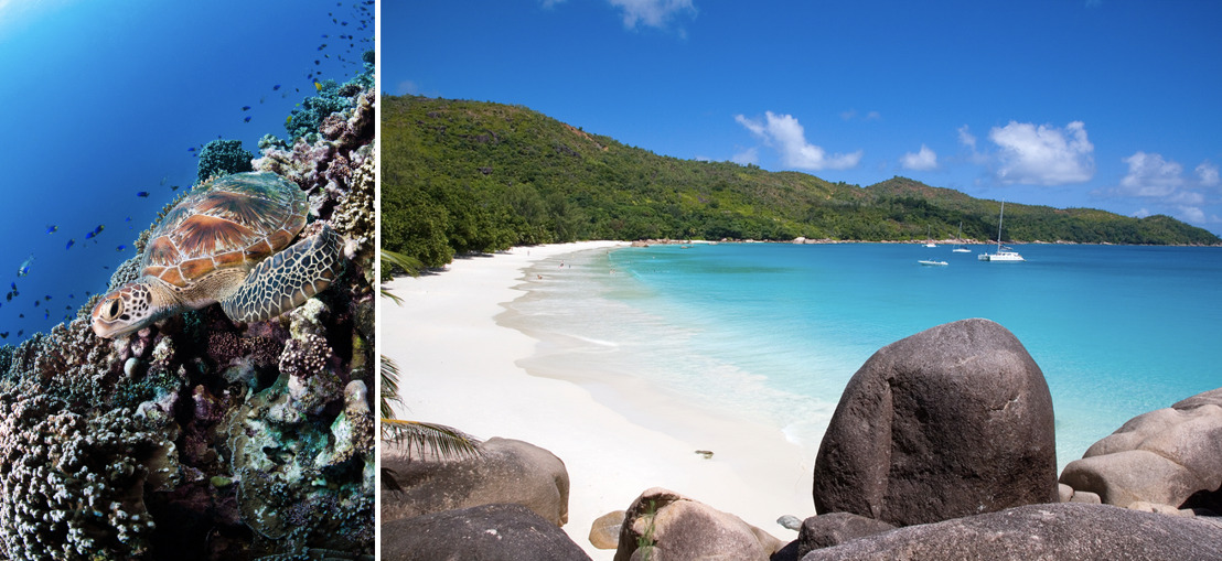 Seychelles: A Leader in Environmental Action
