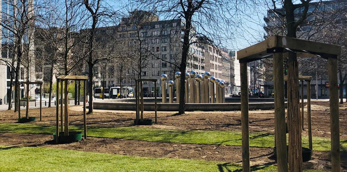 """Les arbres bruxellois souffrent-ils de la sécheresse ? Bruxelles Mobilité utilise un système d'arrosage """"intelligent""""."""