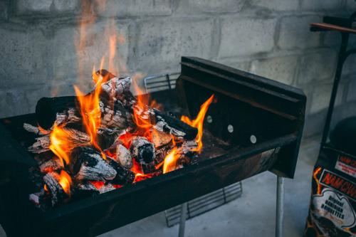 Vanwaar komt de houtskool die wij op onze barbecue leggen? WWF zocht het uit