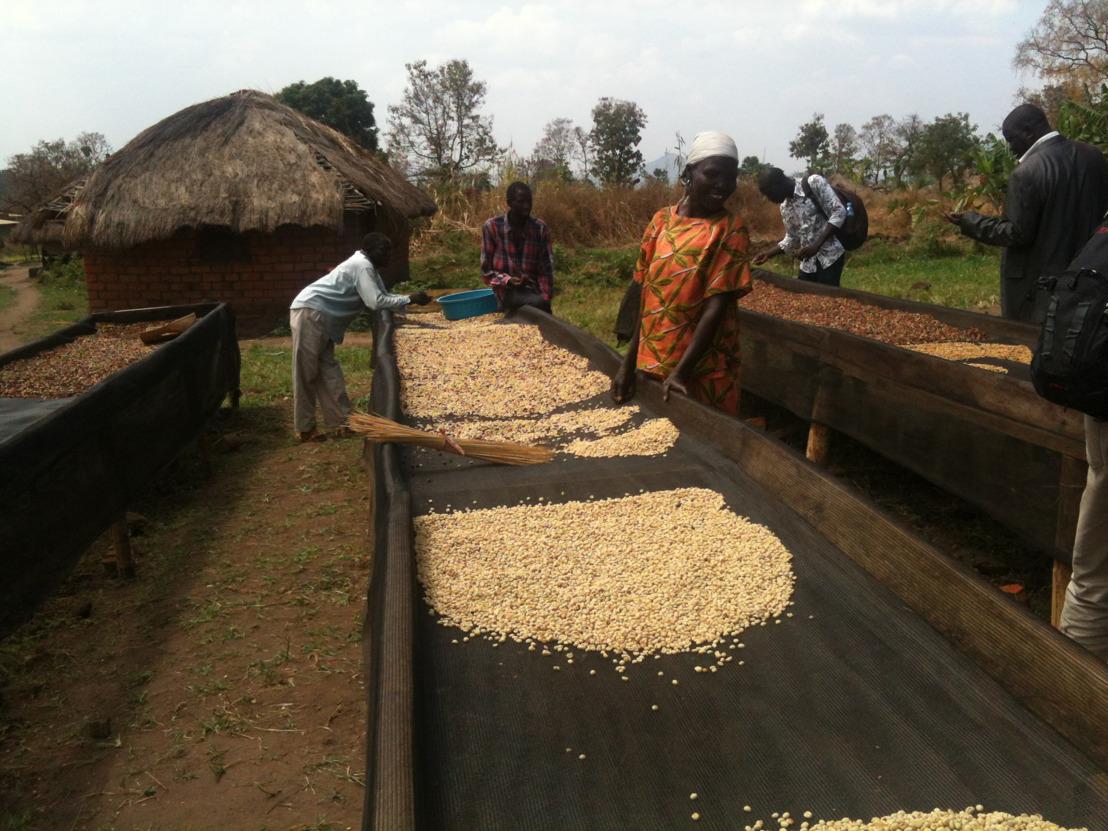 Samen met George Clooney blaast Nespresso de productie van kwaliteitskoffie in Zuid-Soedan nieuw leven in.