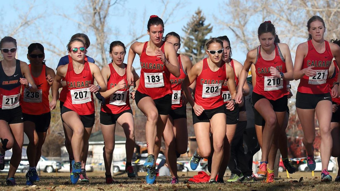 Calgary awarded 2019 Canada West Cross Country Championships