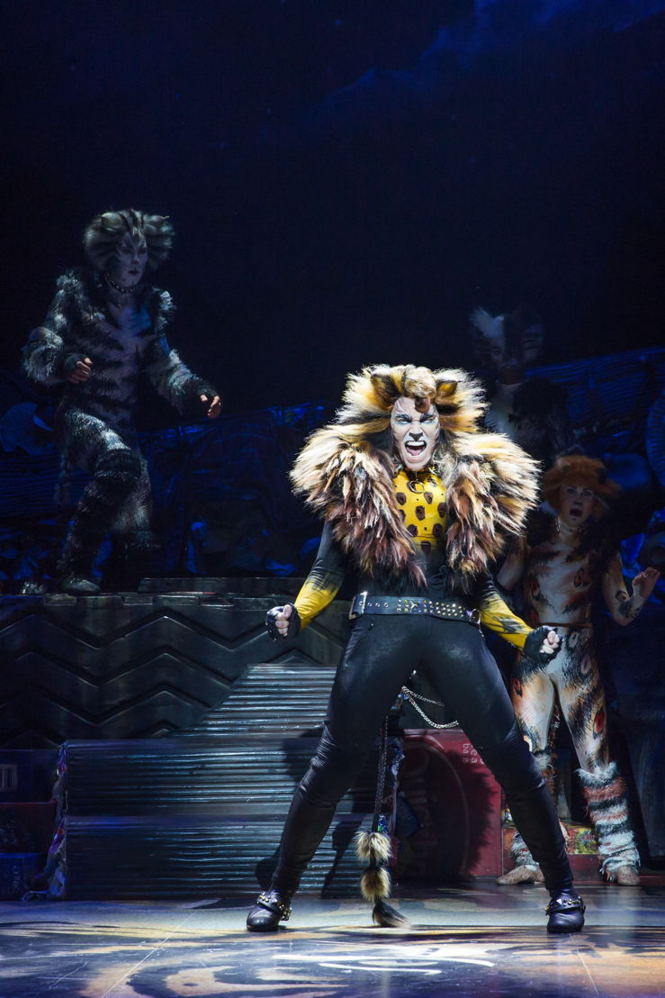 Tyler Hanes as Rum Tum Tugger in CATS on Broadway Photo by Matthew Murphy