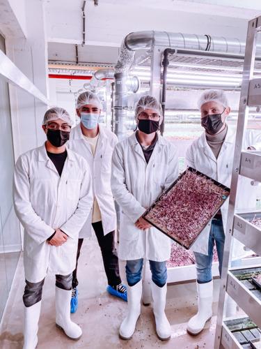 Brusselse stadsboerderij verhoogt efficiëntie dankzij cloudtoepassing studenten EhB
