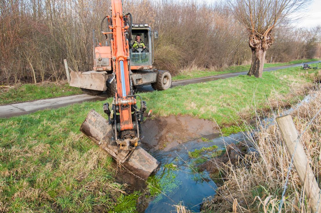 Herinrichting Waarbeek en Deysbeek in Landen geeft rivierdonderpad onbezorgde toekomst
